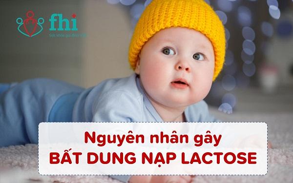 nguyên nhân bất dung nạp lactose