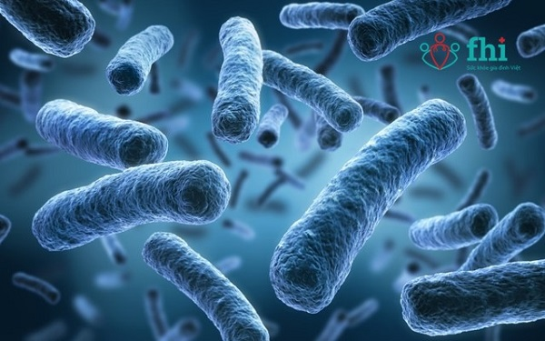 vi khuẩn gây phân sống ở trẻ sơ sinh